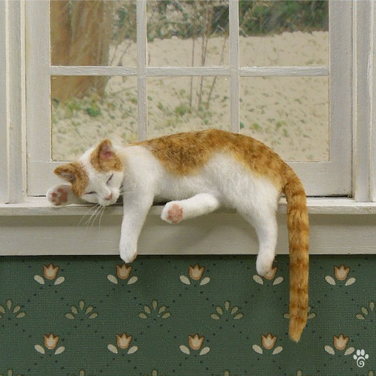 Dollhouse Miniature Sleeping Shelf Cat by Paizley