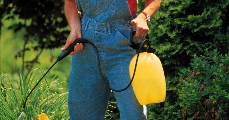 El nitrógeno, fosfato y potasio para las plantas. El nitrógeno, fósforo y potasio, en la forma de potasa, son los tres nutrientes principales que las plantas extraen de la tierra. Estos nutrientes promueven el crecimiento sano y abundante de las flores y el desarrollo de los frutos y ayudan a las plantas a combatir las plagas y enfermedades. Mejorar la disponibilidad de estos importantes ...