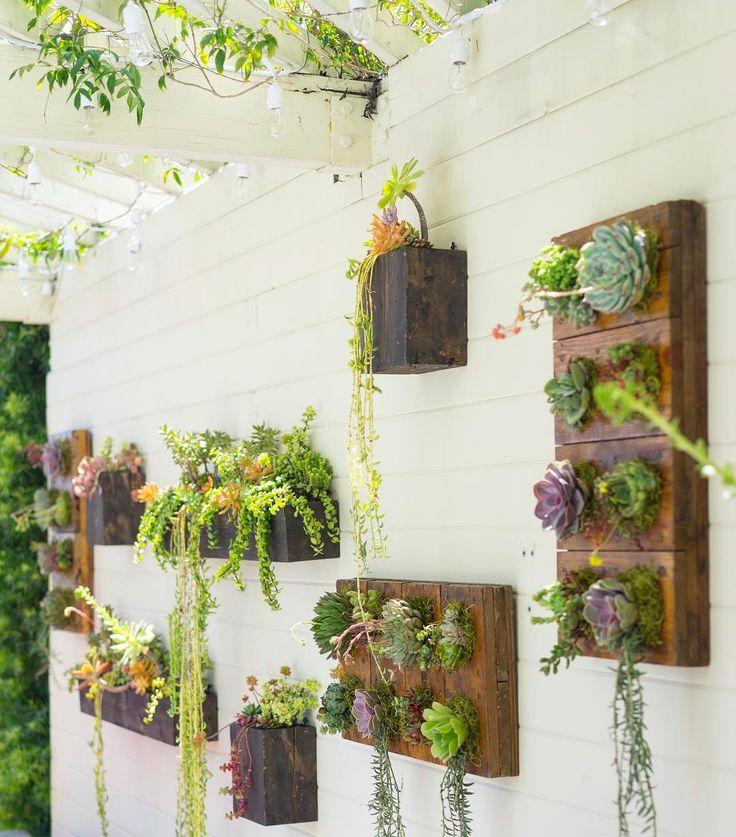 17 Best ideas about Succulent Wall Gardens
