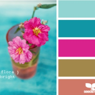 A pretty color palette from design-seeds!!