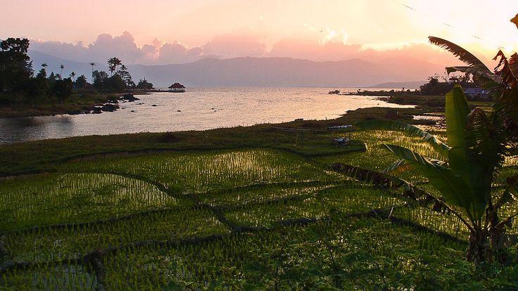 Jambi, Keindahan Alam Danau Kerinci: Wisata Alam Danau Kerinci
