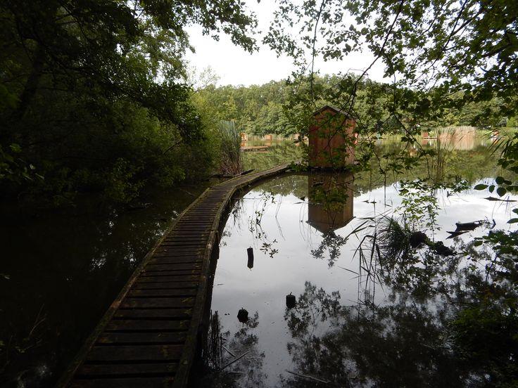 fishing house | Lake Szajk