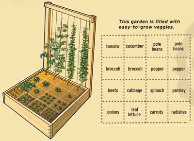 Vegetable Garden Ideas Diy indoor vegetable garden ideas - creditrestore