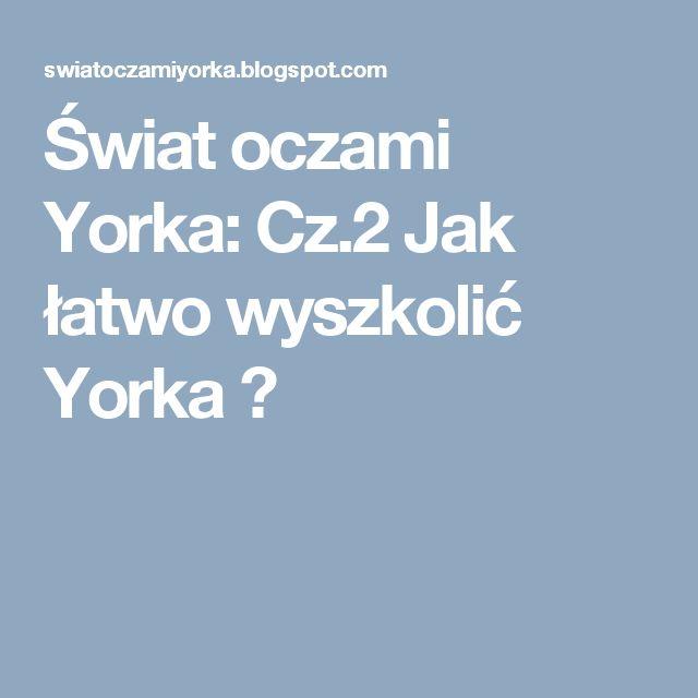 Świat oczami Yorka: Cz.2 Jak łatwo wyszkolić Yorka ?