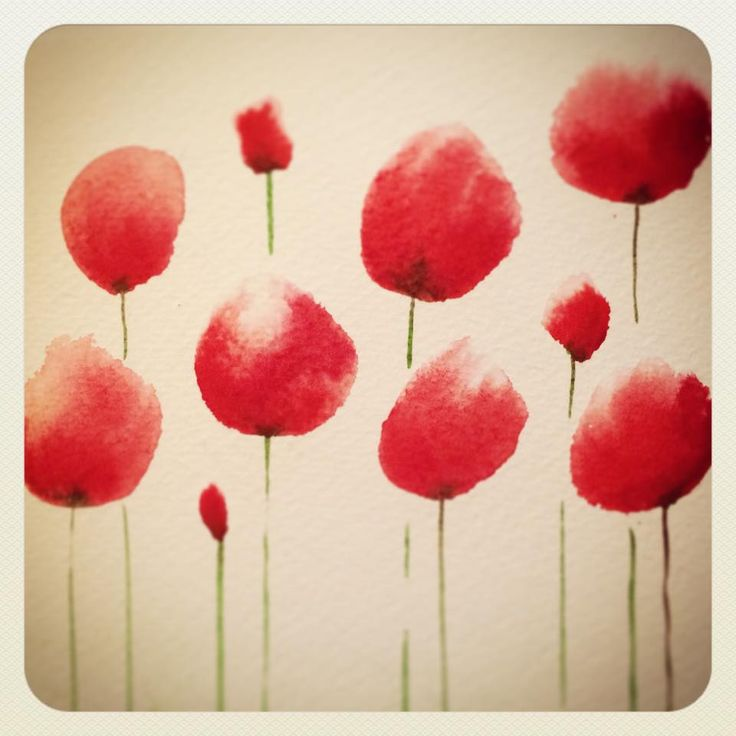 #poppies #flower #watercolor