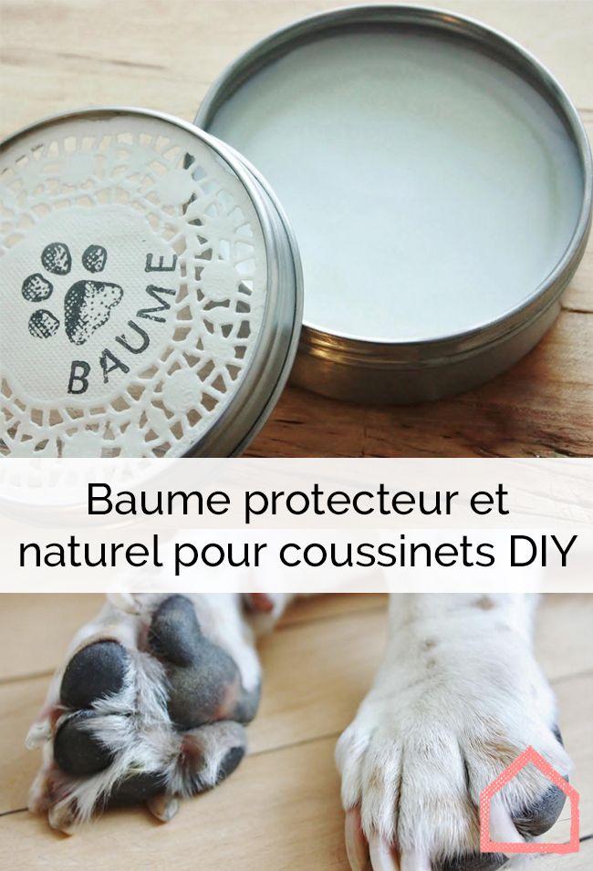 Diy baume protecteur et naturel pour coussinets