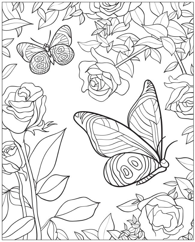 Welcome to dover publications creative haven beautiful for Coloring pages of butterflies for adults