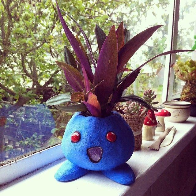 Oddish Planter Google Search Tv Pokemon Pinterest