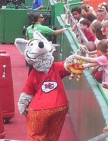 Meet K.C. Wolf....He is one of the Kansas City Chiefs mascots at our football games.