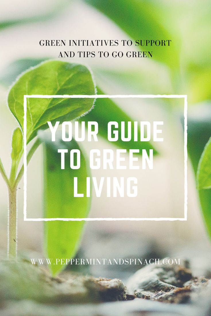 Your Guide To Green Living. Looking to Live a Cleaner, more Eco-Friendly Lifestyle? Want to Support Green Initiatives? Check out my Resources Page on How to Do Just That!