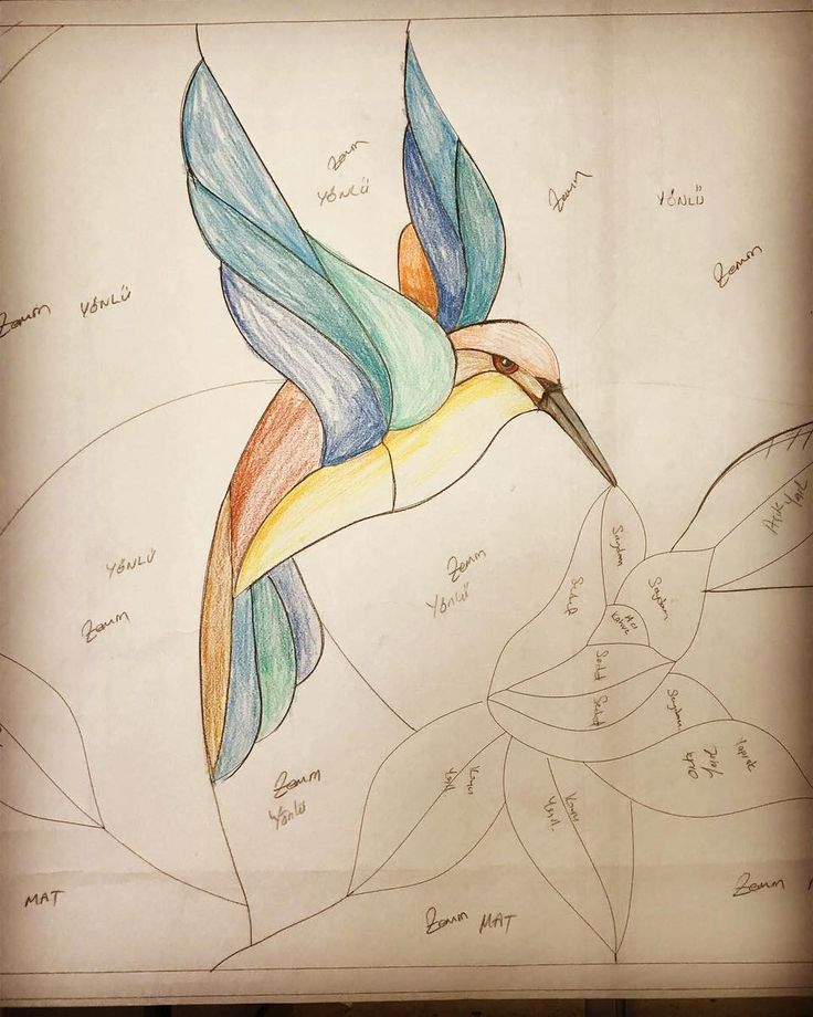 Ari kuşu çizim aşamasi.. Tiffany vitray.. #wwwizmirvitraycomtr #atölyeizmirvitray #değerkatar #alsancak #keyplaza #izmir #vitray #tiffany #tiffanyvitray #staniedglass #mimarlik #mimari http://turkrazzi.com/ipost/1518795247689003999/?code=BUT2DsZDfPf