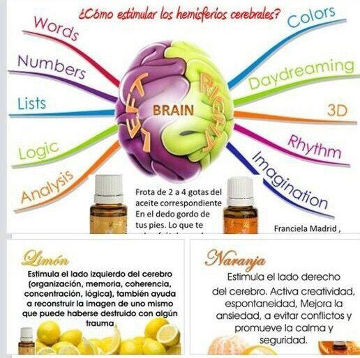 medicamentos para bajar el acido urico alto medidor acido urico alimentos no permitidos acido urico