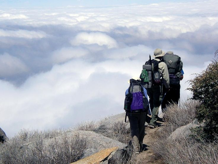 You don't have to disappear for months to enjoy the Pacific Crest Trail. Most people are out for less than a week. The PCT provides for a rich lifetime of day, weekend and week-long trips. Find a trip If you're unfamiliar with the PCT, we recommend starting withone of the trail's guidebooks. They represent thousands …