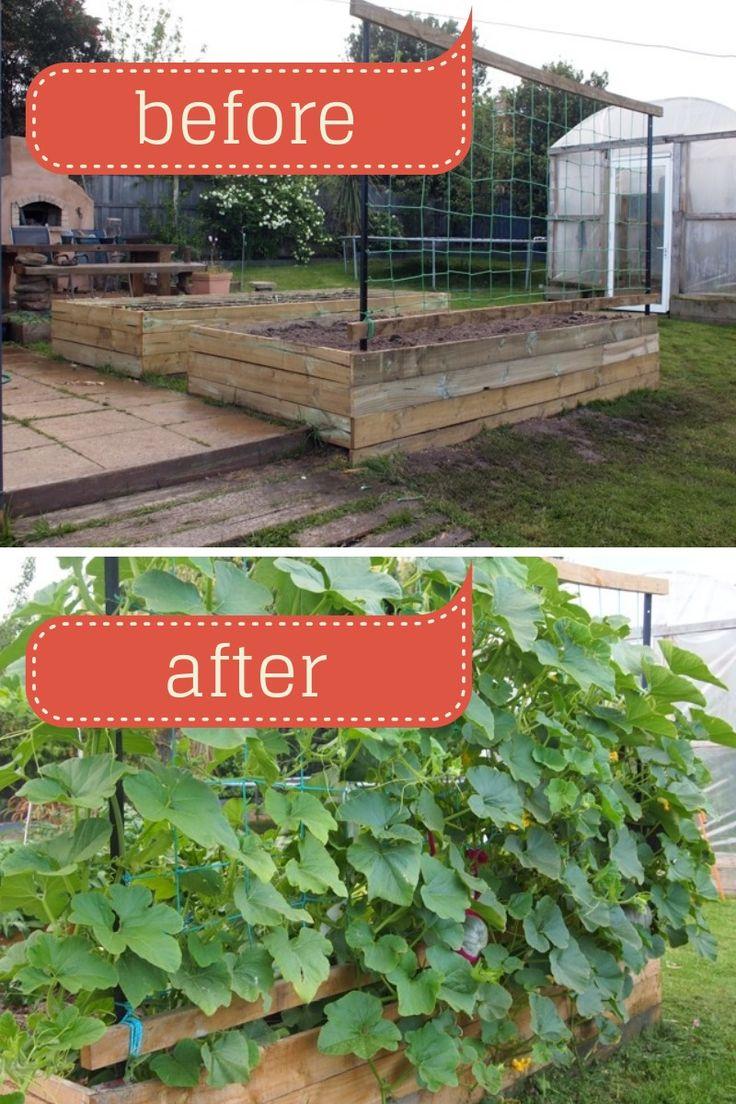 Vertical pumpkin structure | Home Improvment & Decor ...