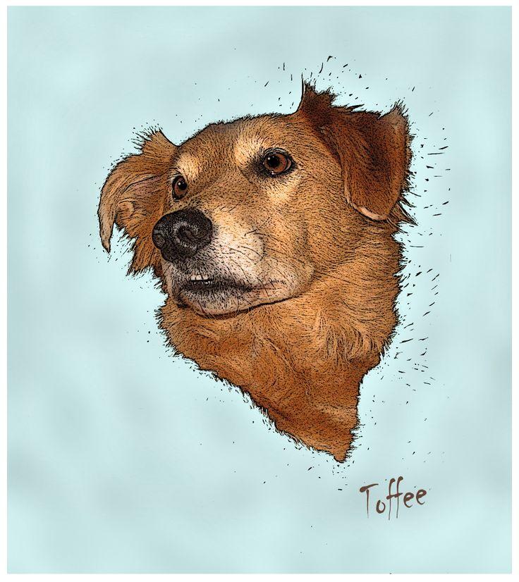 Computer Canines on Etsy. Personalized dog portraits. Headshots £25. www.computercanines@etsy.com