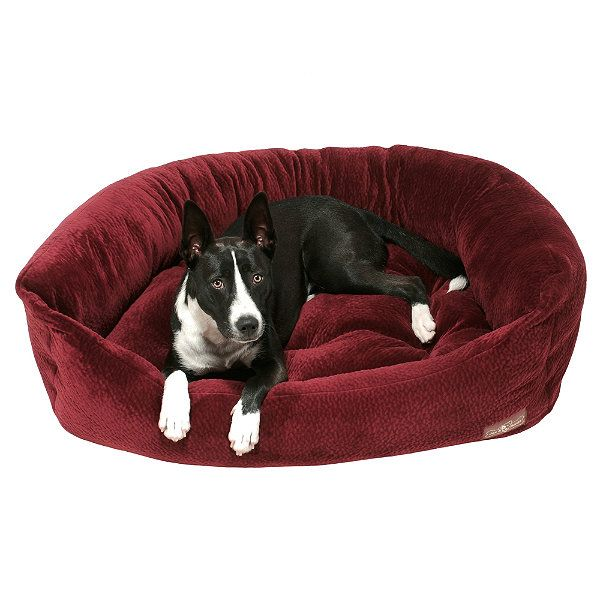 Charming Eco Friendly Pet Furniture For Your Furry Friends: 203 Best Dog Beds Images On Pinterest