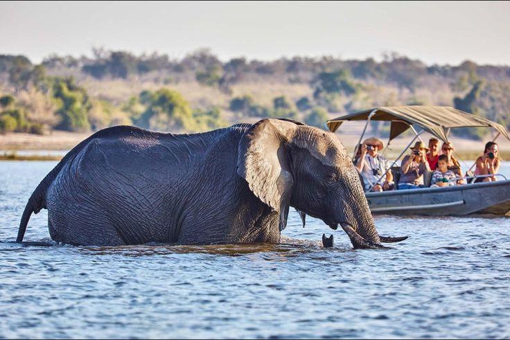 Des touristes à côté de Gaborone
