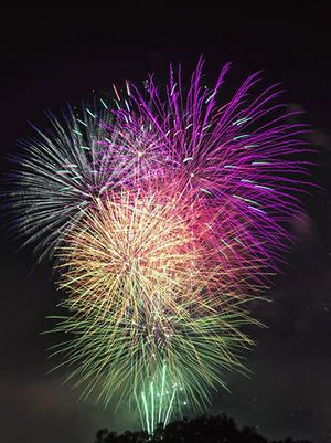 Best 4th of July Fireworks in the World   Record fireworks sales expected this 4th of July - Your Houston News ...