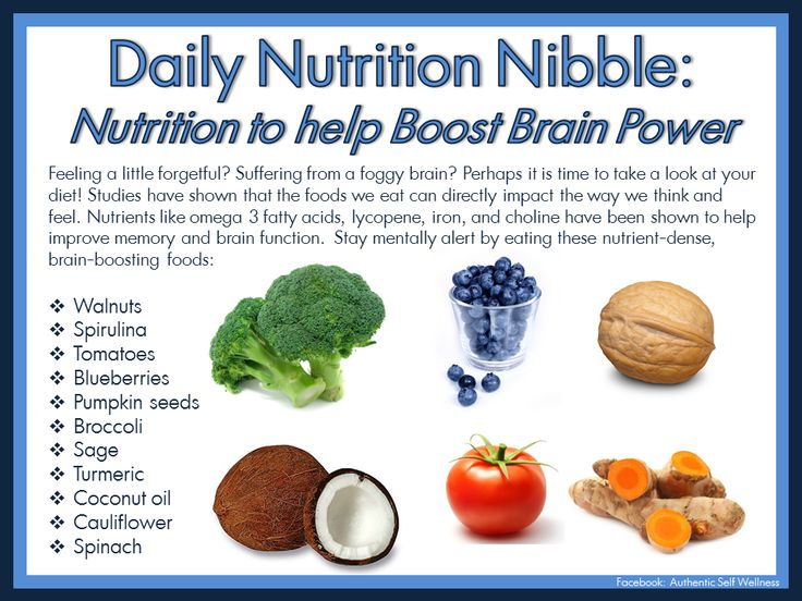 Daily Nutrition Nibble: Nutrition To Help Boost Brain