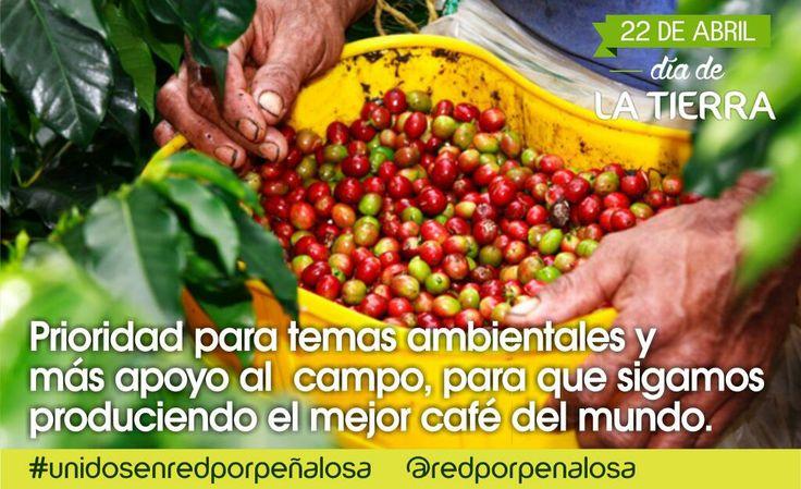 #DiadelaTierra Prioridad a temas ambientales y al campo.