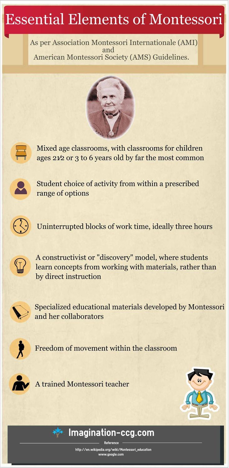 elements of montessori education The montessori approach is an innovative education model driven by the idea of natural children's development while the traditional method is based on following the prearranged education plan, the montessori philosophy focuses on fostering child's innate inclination to explore and interact with the world.