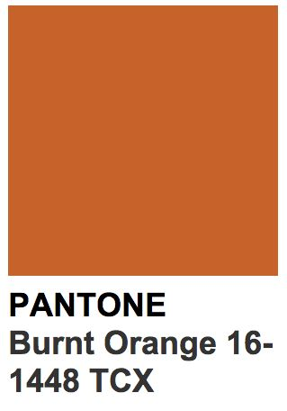 Pantone 16-1448 TCX Burnt Orange