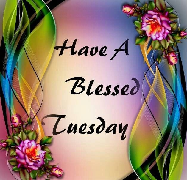 Have A Blessed Tuesday Quotes Quote Days Of The Week Tuesday Tuesday Quotes  Happy Tuesday Tuesday Quote Happy Tuesday Quotes