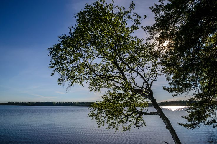 Kuhankuono at Kujenrahka national park near Turku Western Finland. A place worth visiting.