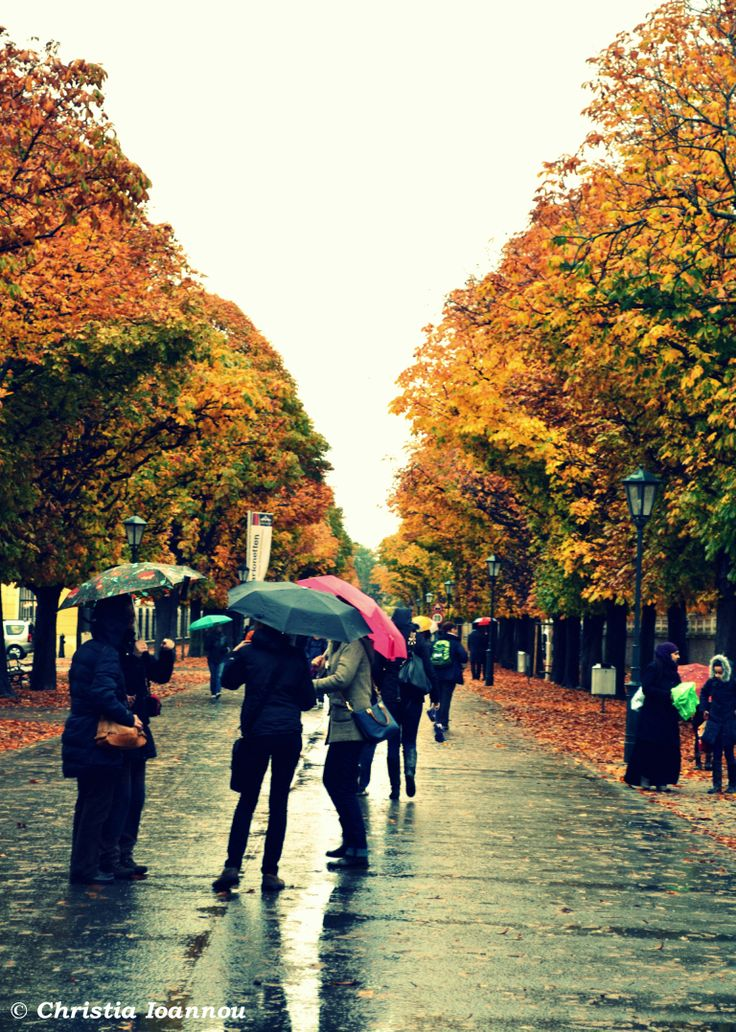 One rainy day @ Vienna, Austria - Around Sisi's Castle