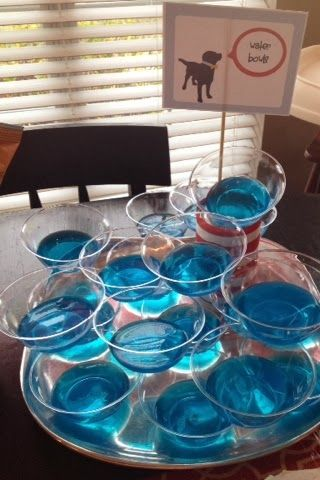 Dog party/ puppy party: Water bowls (blue jello)