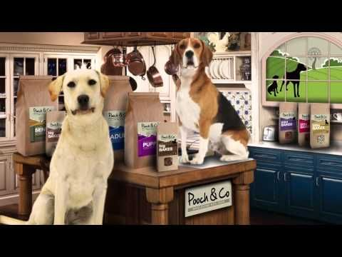 Natural Dog Food. Wheat and Gluten Free Dog Food Suppliers - Pooch and Company.