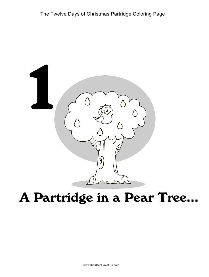 12 Days Of Christmas A Partridge In Pear Tree Coloring Page