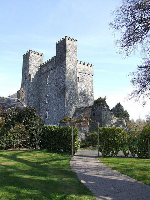 Barberstown castle straffon co kildare ireland for Kildare castle