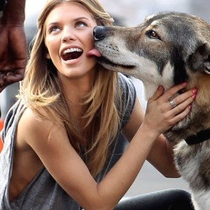 .Annalynnemccord, Puppies, Dogs, Girls Next Doors, Street Style, A Kisses, Annalynne Mccord, Nature Beautiful, Animal