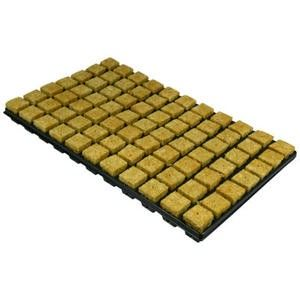 https://www.maxgrowshop.com/en/rockwool/49-plug-in-tray-44mm-rockwool-77ps.html