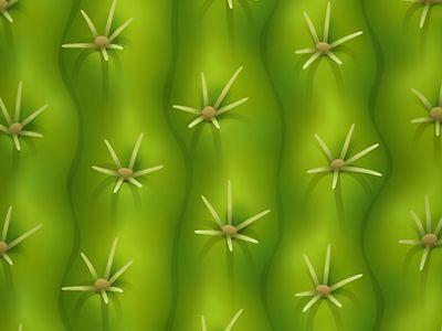 cactus Kevin Fox