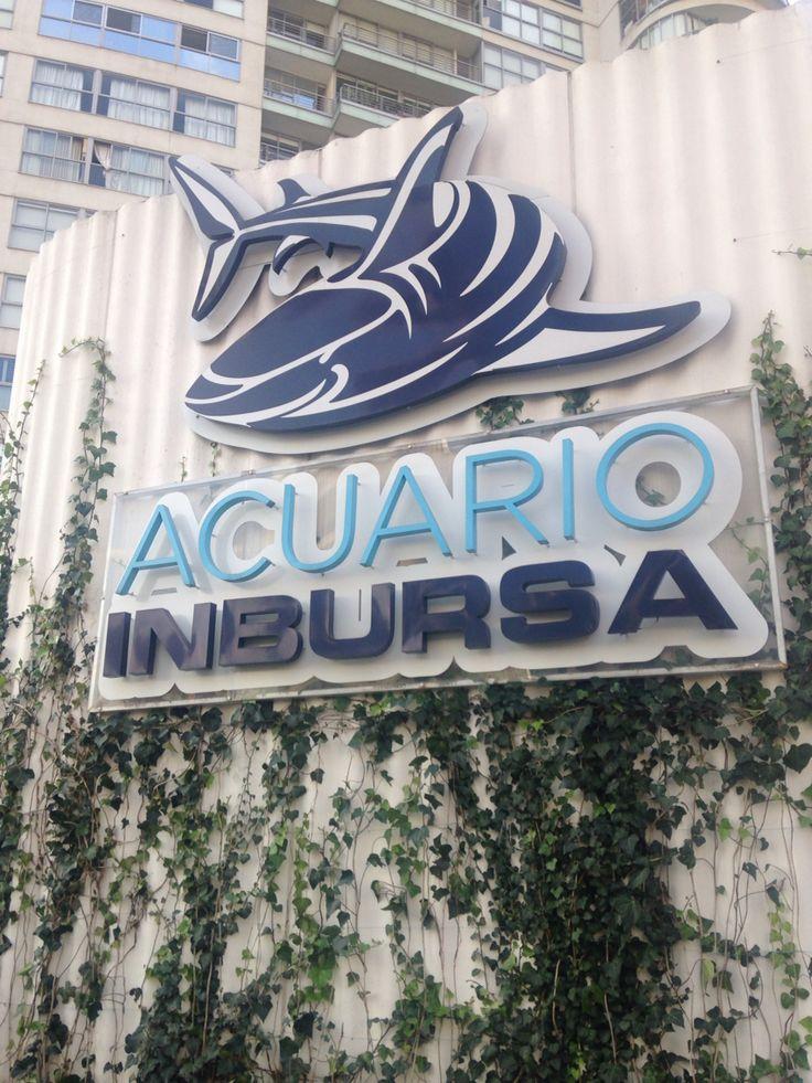 Acuario Inbursa