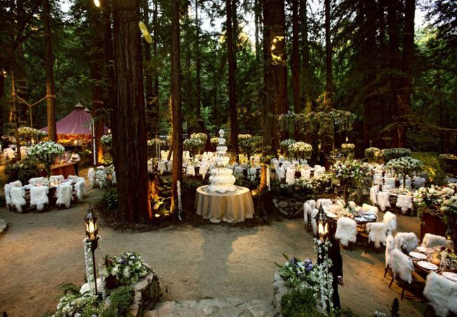 10 Insane Facts About Sean Parker S Enchanted Forest