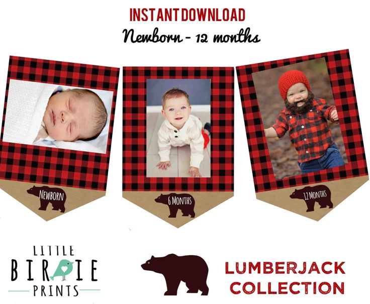 LUMBERJACK First Birthday Party - Lumberjack Monthly Photo Banner Month Circles - Lumberjack Party Printables Instant Download by littlebirdieprints on Etsy https://www.etsy.com/listing/260529853/lumberjack-first-birthday-party