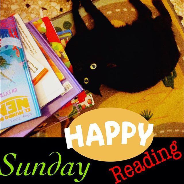 Happy chilling out on a rainy Sunday. Reading some books. Feliz relajandose la tarde lluviosa de domingo. . #instacat #sundaymood #batmanreading #instagato #tardedomingo #batman #leer #reading
