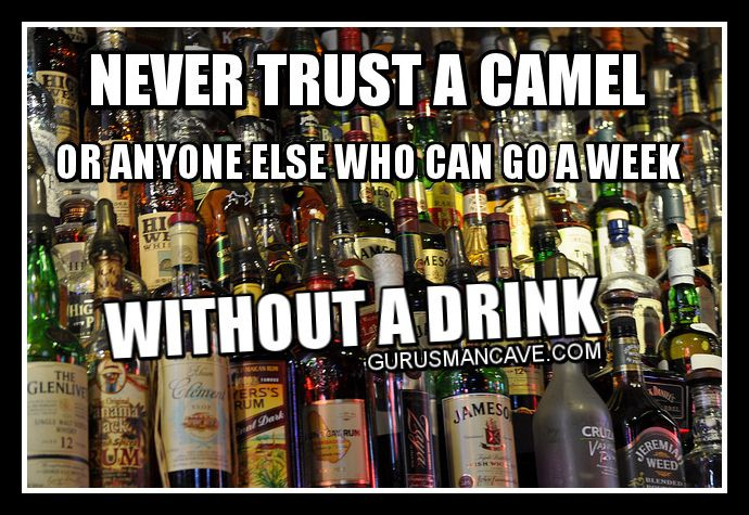 Man Cave Meme : Best images about guru s man cave funny quotes on