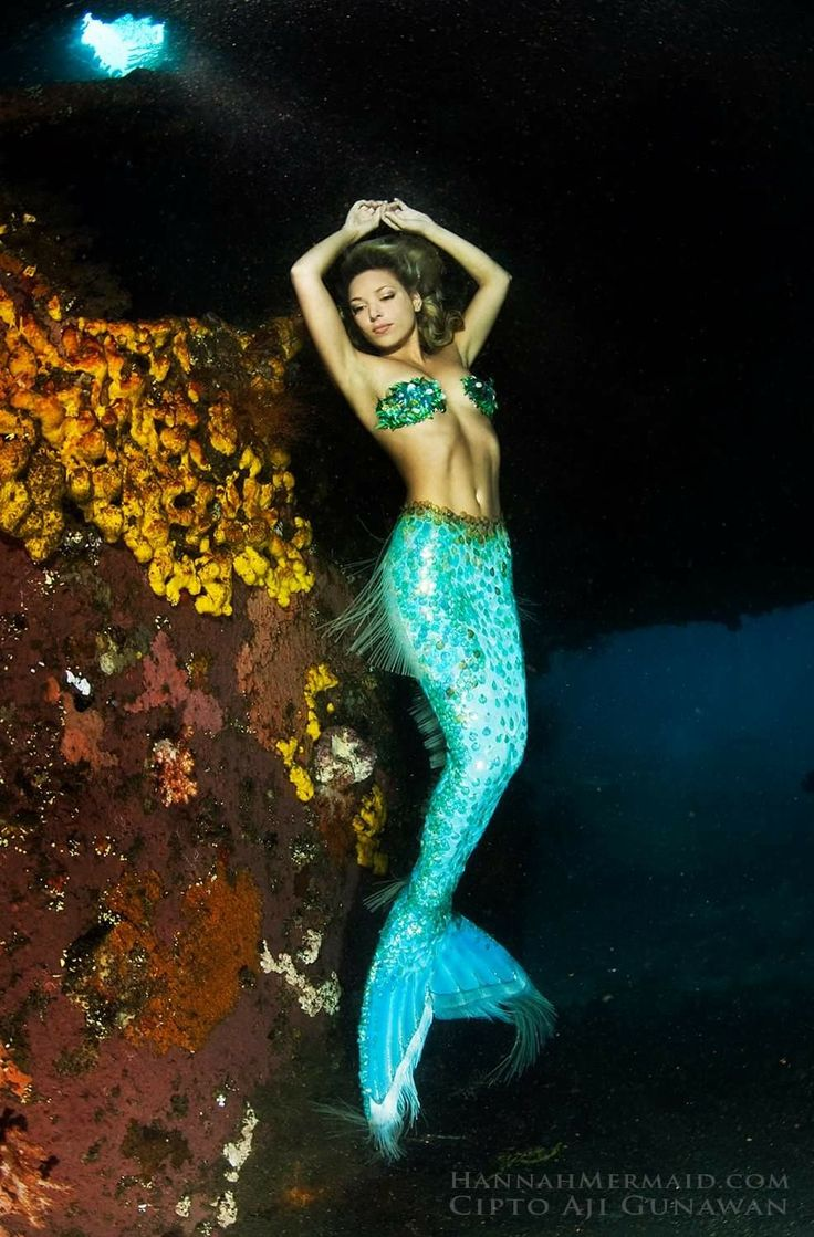2208 best images about mermaids on pinterest