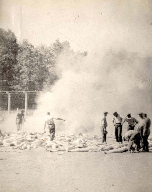 Auschwitz, Poland, Cremation of bodies by the Sonderkommando, Summer 1944. World War Two