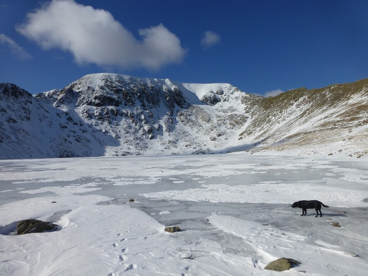 Morgan on Frozen Red Tarn
