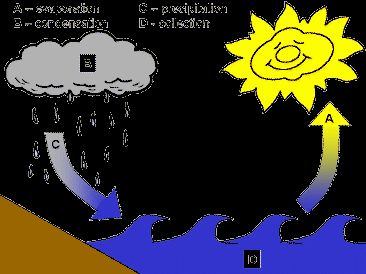 The Water Cycle Printables