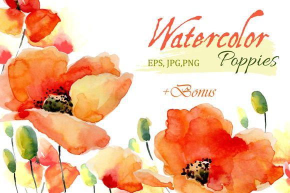 Watercolor Poppies.Flowers set+Bonus by Olga Ponomarchuk on @creativemarket