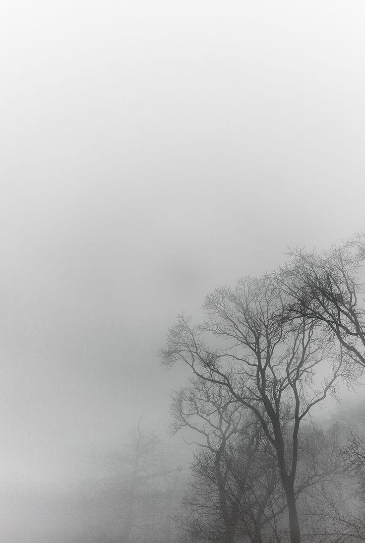 r stapleton . r lawrence - bristol fog