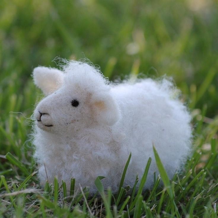 DIY Kit - Sheep Needle Felting Kit - Lamb. $25.00, via Etsy.