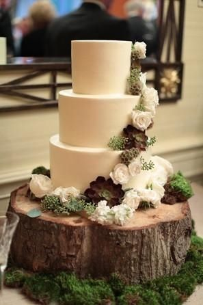 A white wedding cake on a woodcut cake stand decorated with moss and succulents.