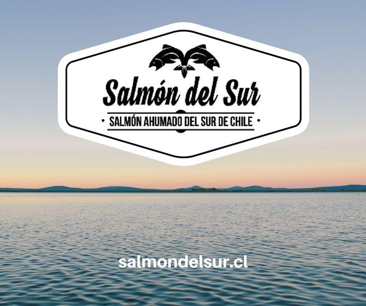 Salmón ahumado en caliente de Salmón del Sur.Todo el sabor del sur directamente a tu mesa. salmondelsur.cl